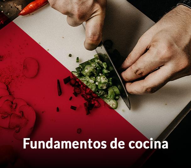 Fundamentos de cocina