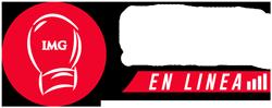 IMG-Online-Logo