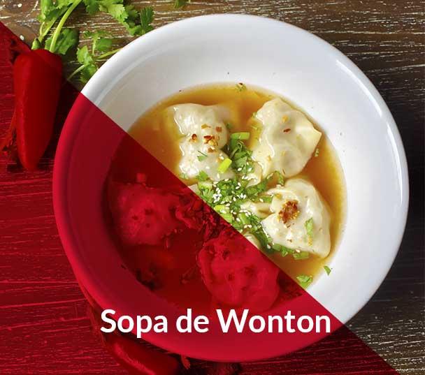 sopa-wonton